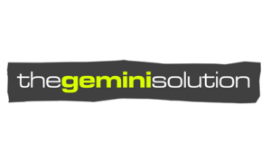 thegeminisolution